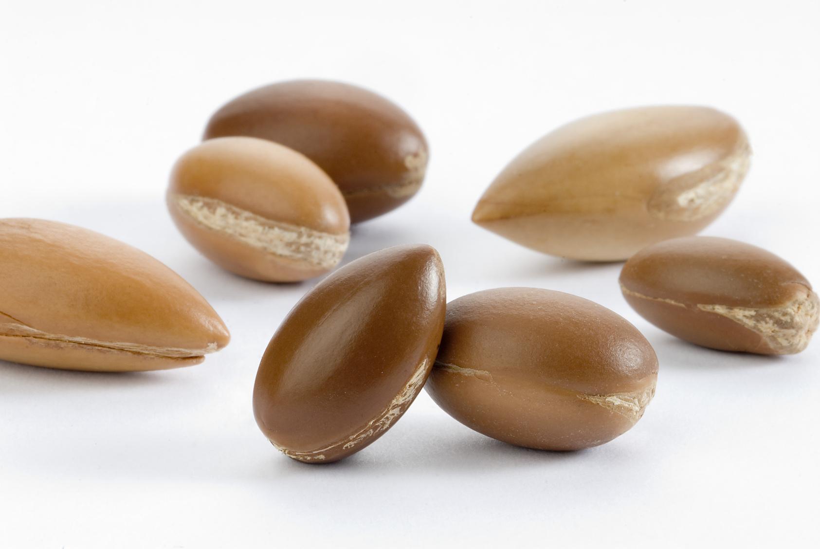 owoce-arganii-2014